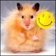 Аватар для tvixa